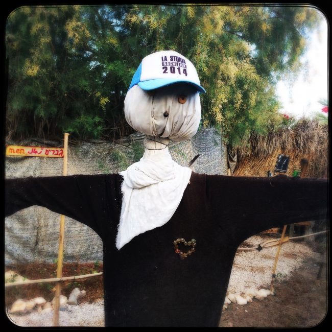 scarecrow with a heart
